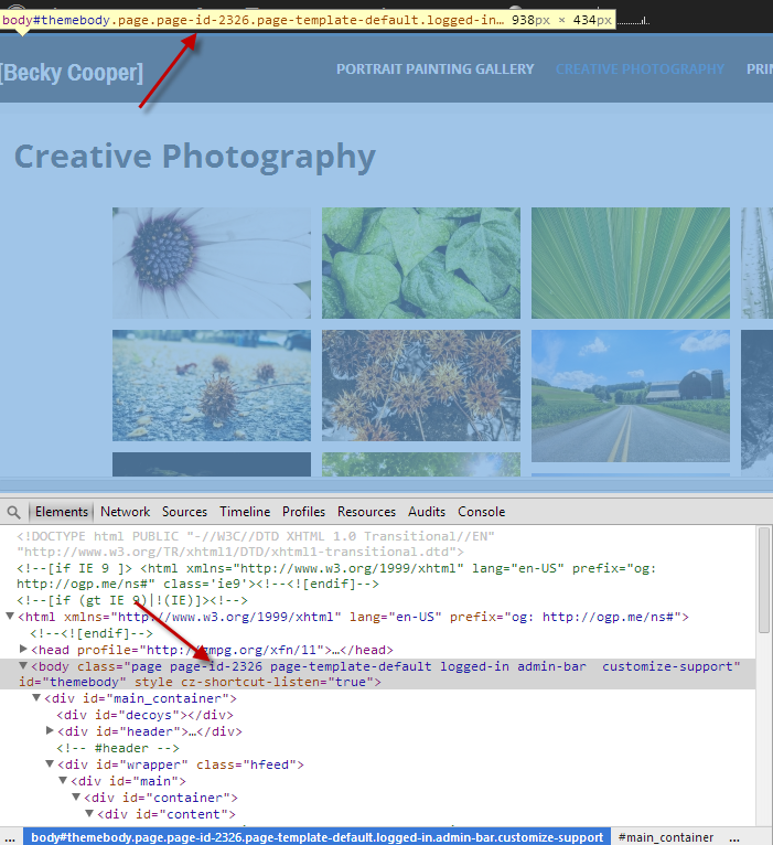 How to Add Custom CSS to Your Site
