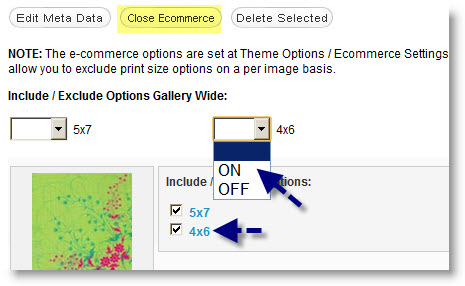 E-Commerce Galleries: How to Include/Exclude Price Options