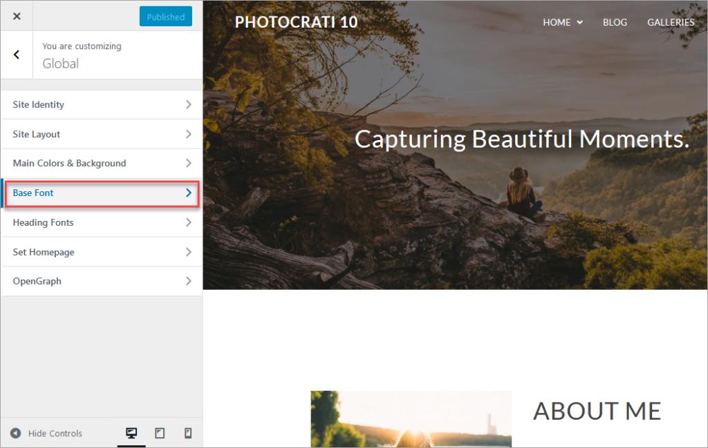 Font settings in Global customization, Photocrati 10