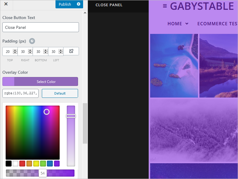 Overlay showing the option to adjust the color to purple.